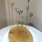 plexiglas chêne laiton