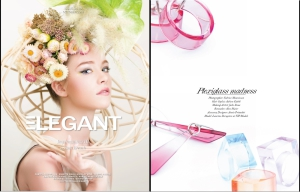 elegant-magazine-plexiglass-madness-anais-preaudat