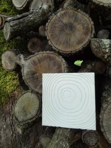 rondin bois platre anais preaudat